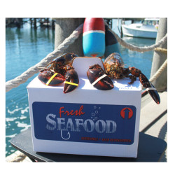 Wild Caught Lobsters Rhode Island Shipping